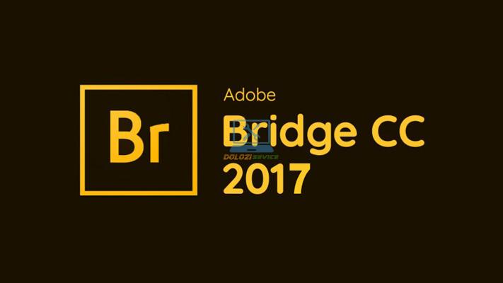 Hướng dẫn cài đặt Bridge 2017 Full Crack