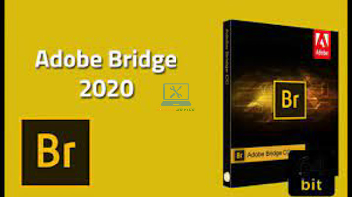 Hướng dẫn cài đặt Bridge 2020 Full Crack